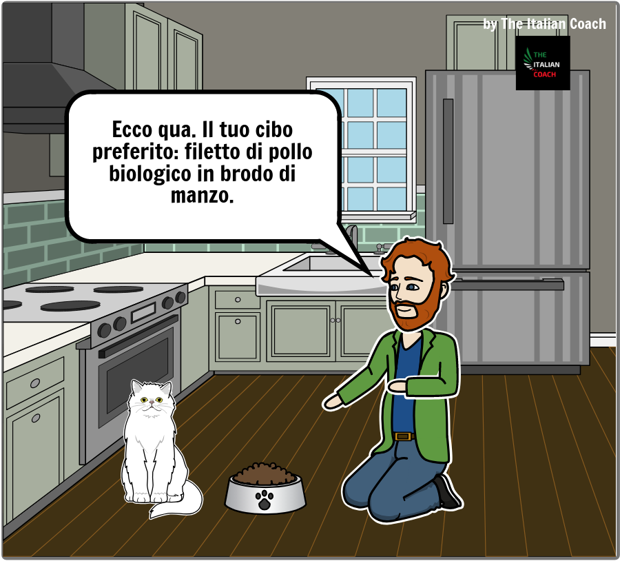 fumetto gatto indeciso - learn italian